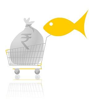 bcwebwise ecommerce